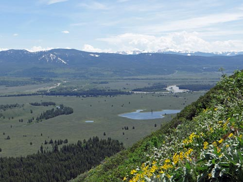 011 Snake River from Signal Mt.